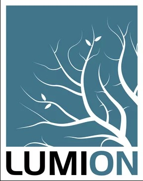lumion for animation