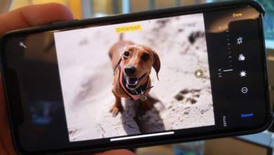تصویر از ۱۰ تا از بهترین ترفندهای ios 13 برای استفاده موثر از گوشی آیفون و آیپد