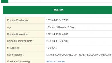 https://www.online-tech-tips.com/wp-content/uploads/2012/08/domain-age-checker-1.png