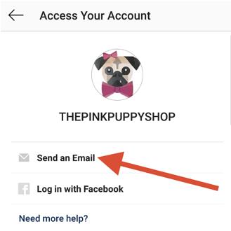 forgot-instagram-password-send-email