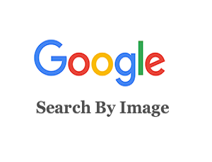 Google Reverse Image Search (search by image)