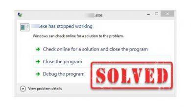 program stopped error
