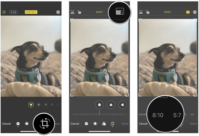 How to automatically crop photos in Photos on iPhone and iPad by showing steps: Tap the Crop button, tap the Crop Box in the upper right corner, tap the aspect ratio you want